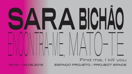 Sara Bichão | Coleçãop Moderna | até 4 de junho 2018